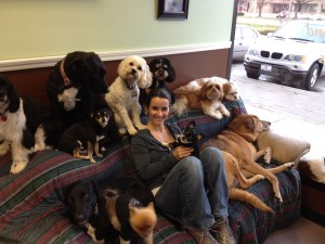 Overland Park Dog Boarding and Doggy Day Care